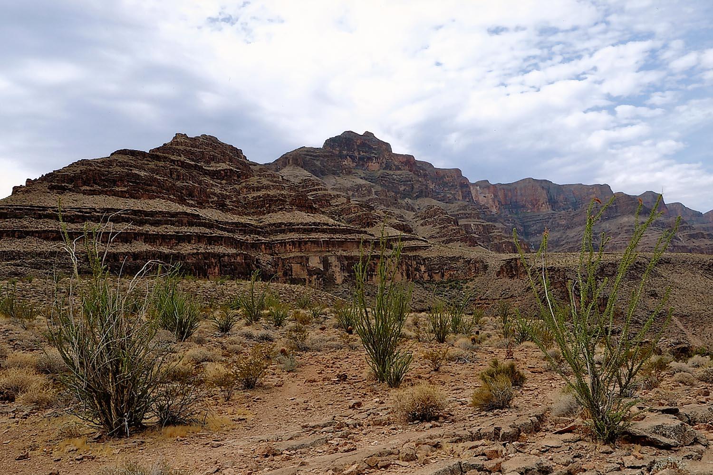 woestijn 1500 fotodigitaliseren